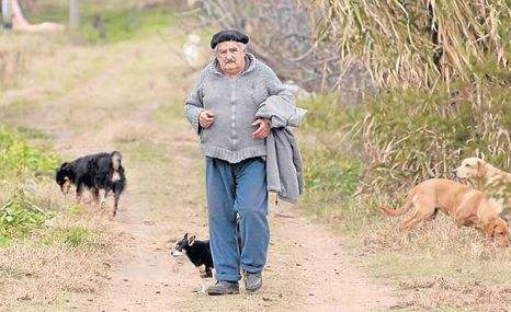 Imagen-Jose-Mujica-cultiva-arvejas-uruguay_ECMIMA20120909_0111_39