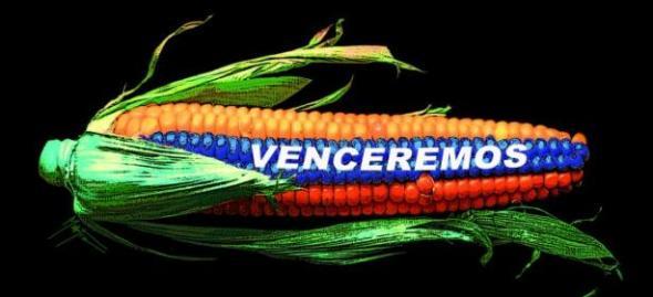 venezuela_somos_todos_small